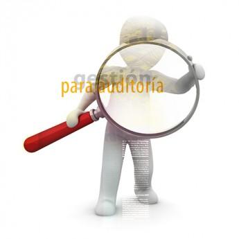 Gestión Contable y Gestión Administrativa para Auditoría